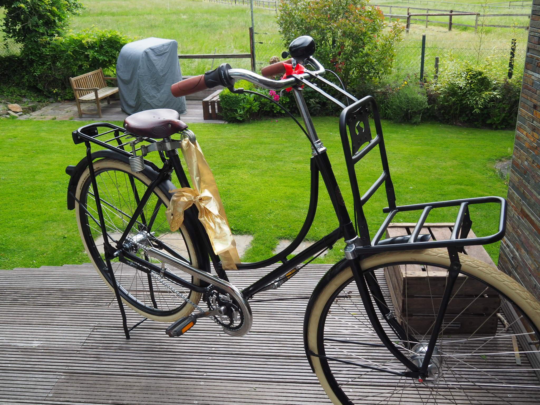 Ernstgemachtes Hollandrad