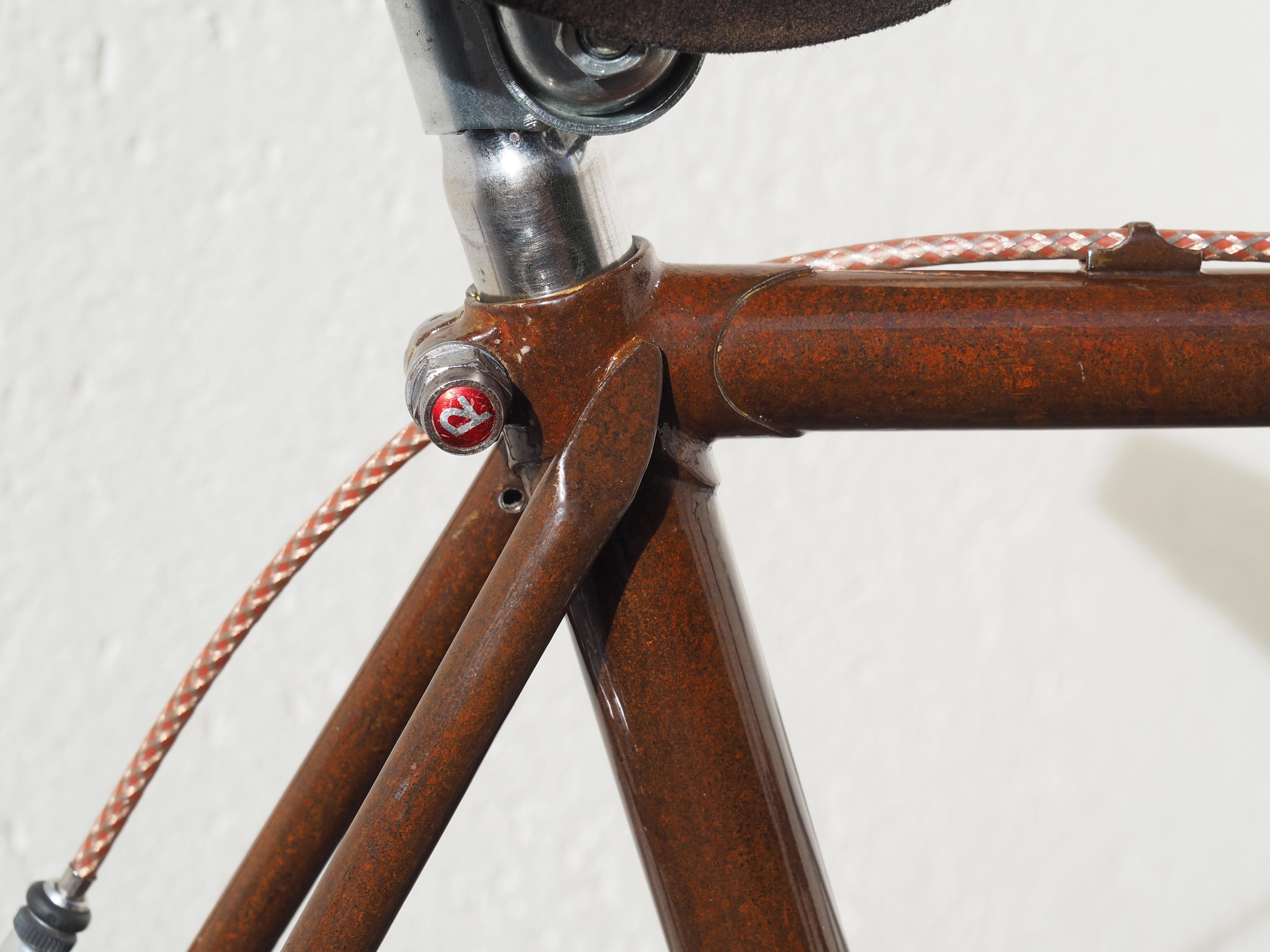 Raleigh Edelrost-Speedbike ERNSTgemacht